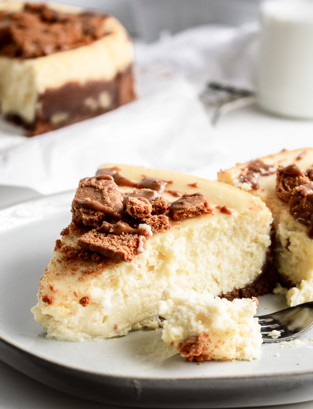 Cookie butter cheesecake slice on a white plate