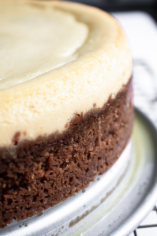 Close up of ricotta cheesecake with biscoff cookie crust